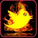 Twitter savannah 01-min